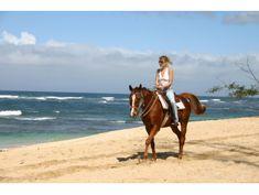 North Shore Beach Horseback Riding, Oahu / Waikiki
