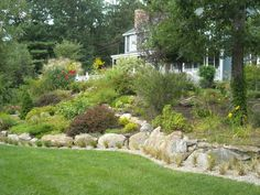 landscaped slopes | have a slope mixed with bulbs, perennials and shrubs. It is about ...