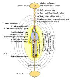 Chakra Meditation, Kundalini Yoga, Illumination Spirituelle, Corps Astral, Plexus Solaire, Chi Energy, Les Chakras, Body Anatomy, Qigong