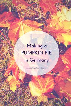 Making pumpkin pie in Germany | No Apathy Allowed