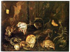 Otto_Marseus_van_Schrieck-Stillleben_mit_Insekten_und_Amphibien.jpg 2,600×1,922 pixels