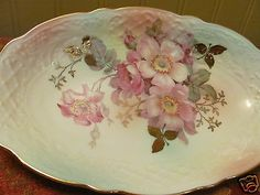 Antique Handpainted China Bowl Wild Roses Schumann Arzburg Germany Relish Dish | eBay
