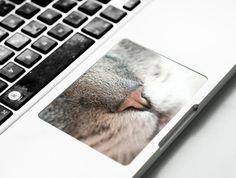 keyboard_stickers_8.jpg?itok=afUJLyhw