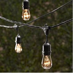 Outdoor string lights - LOVE this kind. Durable and larger.  Just got these at Costco, they look amazing on the patio!