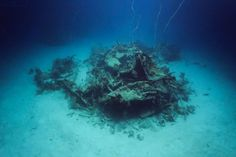 Downed WWII aircraft missing for 72 years located in Pacific Islands