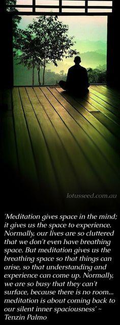 Tenzin Palmo quotes by lotusseed.com.au #EasyMeditation
