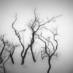 by Hengki Koentjoro ©