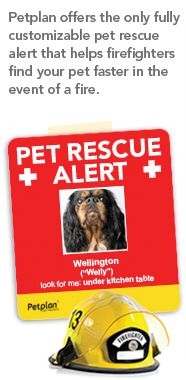 Pet Rescue Alert -  A fully customizable pet rescue alert that helps firefighters find your pet faster in the event of a fire. | Shared by LION