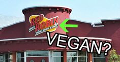 Vegan food at Red Robin is better than ever! NEW vegan patties and tons of toppings to choose from! Vegan Restaurant Options, Vegan Restaurants, Dairy Free Options, Vegan Options, Vegan Menu, Vegan Vegetarian, Vegan Foods, Vegan Recipes, Red Robin Restaurant