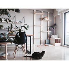 イームズシェルチェア/ダイニングテーブル/WALPA壁紙/壁紙 グレー/壁紙DIY…などのインテリア実例 - 2016-06-04 10:21:22 | RoomClip(ルームクリップ)