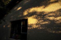 Full solar eclipse on wall. Will Keightley