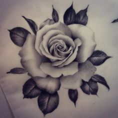 ...and another one. Would love to tattoo some more realistic roses. Let me know if you're interested!