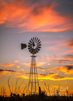 NoneSouthwest Windmill:  http://fineartamerica.com/profiles/robert-bales/shop/all/all/all