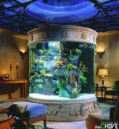Aquarium Aquariums Super, Amazing Aquariums, Tanked Aquariums, Custom Aquariums, Fish Aquariums, Marine Aquarium, Saltwater Aquarium, Aquarium Fish Tank, Saltwater Tank