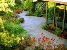Floradora Garden Design, Castro Valley, CA Water Wise Landscaping, Succulent Landscaping, Landscaping Ideas, Garden Pots, Garden Ideas, Landscape Design, Garden Design, Companion Gardening, Castro Valley