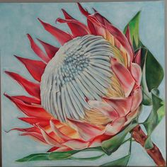 Protea by Molawrenson Acrylic Painting Flowers, Silk Painting, Watercolor Flowers, Watercolor Art, Protea Art, Protea Flower, List Of Paintings, Flower Art, Art Flowers