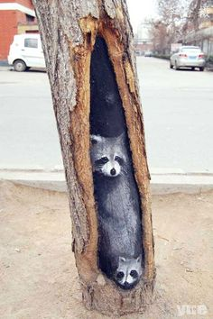 In the city of Shijiazhuang, China, an artist has brought smiles to pedestrians by painting drab tree holes and turning them into works of art. Since February, over eleven tree trunks on Jiuzhong Street have become the canvas for aspiring 23 year-old art student, Wang Yue//