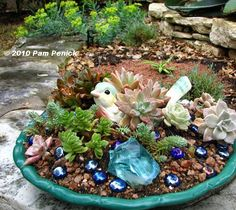 Succulent Dish Garden Ideas the decorated house how to create a succulent dish garden tutorial Digging Chirpy Succulent Dish