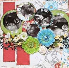 Layout: Sonograms