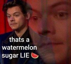 One Direction Humor, One Direction Pictures, One Direction Harry, Direction Quotes, Harry Styles Photos, Harry Styles Memes, Harry Styles Imagines, Stupid Funny Memes, Funny Relatable Memes