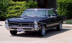 GTO Pontiac Muscle car o mais potente! 1965 Gto, 1965 Pontiac Gto, Pontiac Cars, Alfa Cars, 1969 Chevelle, Pontiac Lemans, Pontiac Firebird, Old School Muscle Cars, Best Muscle Cars