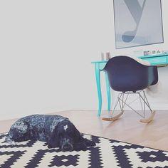 Hundi-sitting  #cockerspaniel #decor #dog #dogs #dogsitting #dogsofinstagram #eames #englishcockerspaniel #Hamburg #hh #home #homedecor #homeinspo #hunde #hundisitting #Ikea #interieur #interior #livingroom #meinikea #myhome #playtype #typography
