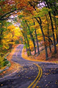 Autumn, New York State this appears to the road road on for Lake George,NY this October on vacation. What a sense of Gods creation around us. Beautiful Roads, Beautiful World, Beautiful Places, Beautiful Pictures, Simply Beautiful, Autumn Scenery, Winding Road, All Nature, Autumn Nature
