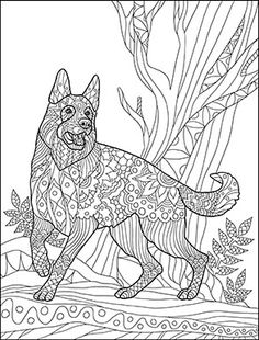 why is my german shepherd dog whining constantly - German Shepherd Coloring Pages Free 3