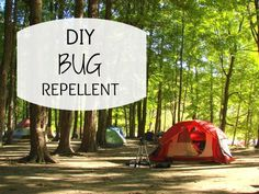 Easy Homemade Bug Repellent Recipe
