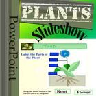 This powerpoint file has information for plants. It covers:A) Why plants are important.B) The life cycle of plants.C) What plants are used for....
