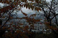 by Tea Davis ©  - Tbilisi - Mtatsminda