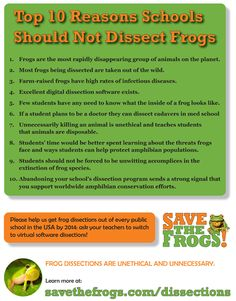 Don't dissect frogs! www.savethefrogs.com/dissections