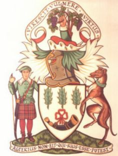 View the Burnett Coats of Arms >> Scottish Clans, Holly Leaf, Coat Of Arms, Chevron, Wings, Scotland, Coats, Spaces, Christmas