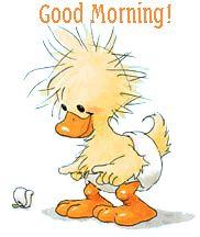 Animated Good Morning | good-morning-duckling-ag1.gif