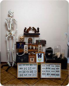 mes curiosités Julien, Bar Cart, Cabinet, Furniture, Home Decor, Projects, Clothes Stand, Decoration Home, Room Decor