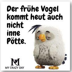 Früher Vogel
