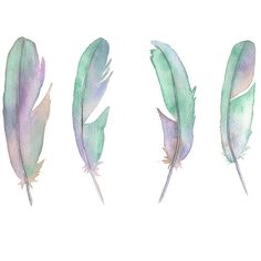 Feathers print F1616, pastel feather watercolor painting print, mint... ($23) ❤ liked on Polyvore featuring home, home decor, wall art, water color painting, watercolor wall art, water colour painting, watercolor painting and mint green wall art