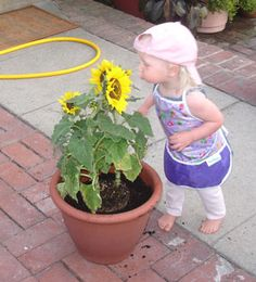 Top ten safe plants for toddlers