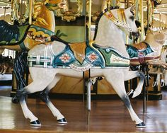 """The c.1921 Dentzel/Illions Carousel at  San Francisco Zoo in San Francisco, CA.  Dentzel Outside Row Stander """"Roached Mane"""" Style"""
