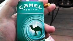 rj reynolds tobacco company,rj reynolds cigarette brands -shopping cigs website :http://www.cigarettescigs.com