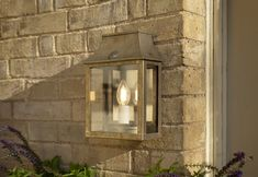 Find inspiration for your garden lighting ideas with our vintage-style brass Peacock Lantern with mirror, for your porch, security lighting & sensor. Brass Outdoor Lighting, Outdoor Garden Lighting, Outdoor Walls, Modern Properties, Modern Rustic Homes, Living Room Green, Beautiful Mirrors, Wall Lantern, Glass Panels