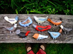 Jenny Mendes: new birds