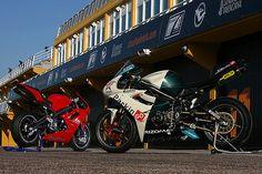 https://flic.kr/p/7Mz8tf | Triumph Daytona 675: racing and standard version