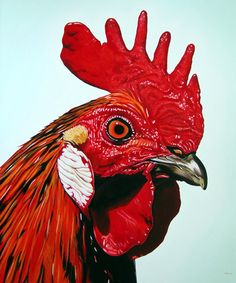 "Clara Bastian; Oil, Painting ""Rooster"""