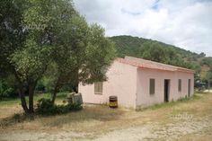 Stazzo di ampia metratura vicino San Teodoro - Terreni e rustici In vendita a Olbia-Tempio