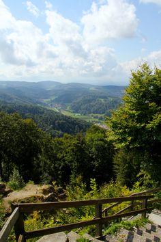 Felsenegg-Uetliberg: My First Hike in Switzerland — LIVING MINNALY Switzerland Vacation, Eurotrip, Lush Green, Farm Animals, Places To Go, Hiking, Europe, River, Explore