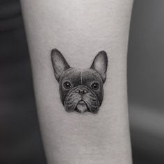 48 Ideas Tattoo Old School Dog Tatoo Band Tattoos, Weird Tattoos, Badass Tattoos, Dog Tattoos, Animal Tattoos, Small Tattoos, Portrait Tattoos, Tattoo Bulldog, French Bulldog Tattoo