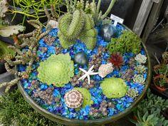 Vida Suculenta: Por que utilizar pedrinhas nos vasos de Suculentas e Cactos Small World Play, Stepping Stones, Cactus, Succulents, Outdoor Decor, Miniature Gardens, Blog, Potted Succulents, Gardens