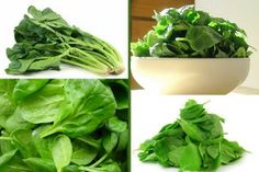 Healthy and Delicious Spinach Recipes Good Sources Of Iron, Vegetable Seasoning, In Season Produce, Spinach Recipes, Health And Nutrition, Vegetarian, Seasons, Vegetables, Cooking