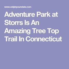 Adventure Park at Storrs Is An Amazing Tree Top Trail In Connecticut